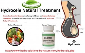 5 Most Effective Hydrocele Natural Treatment - Herbs ...