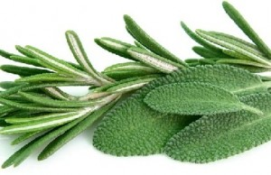 Rosemary & Sage Remedy