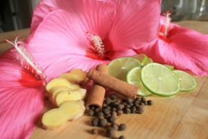 Ginger, Honey and Hibiscus Flower Essence