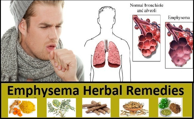 Emphysema-Herbal-Remedies