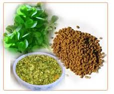 Fenugreek Herb for Emphysema