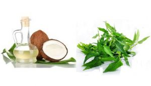 Coconut Oil & Curry Leaves