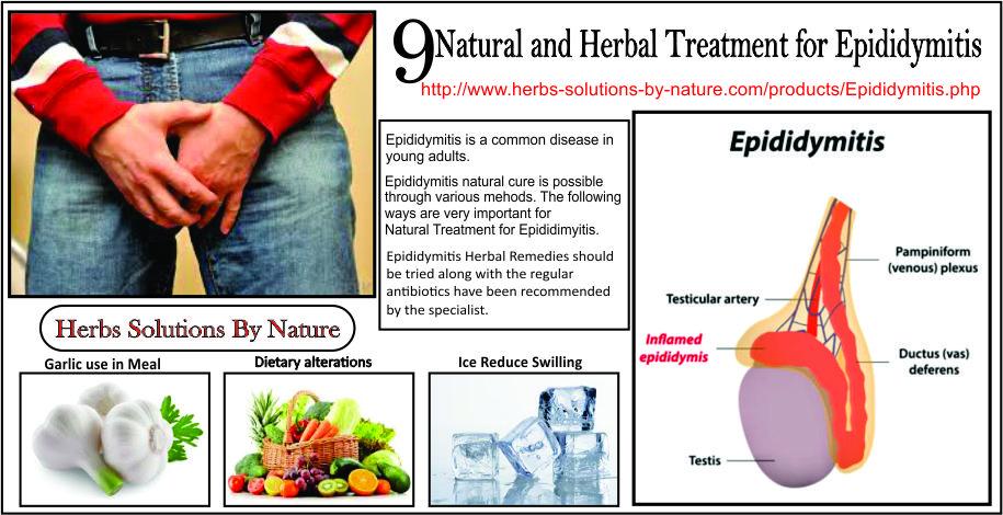 Natural-Treatment-for-Epididymitis