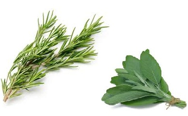 Natural Herbal Treatment for Premature Gray Hair Turns into