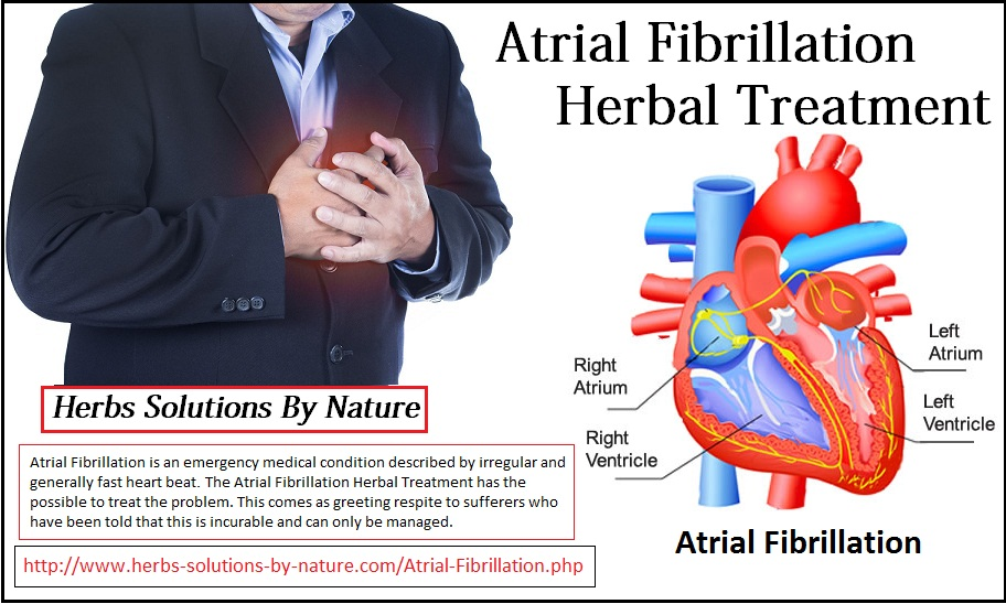 Herbal-Treatment-for-Atrial-Fibrillation