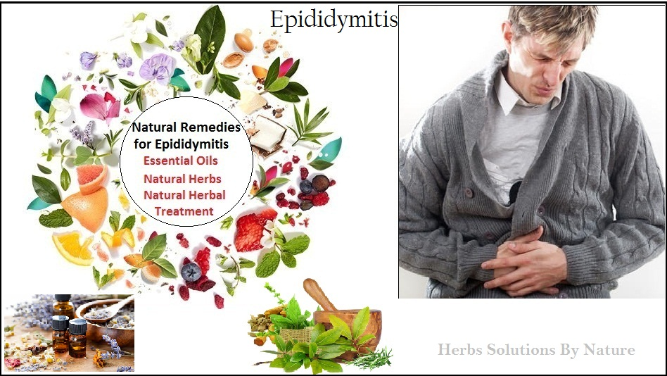 Natural-Treatment-for-Epididymitis